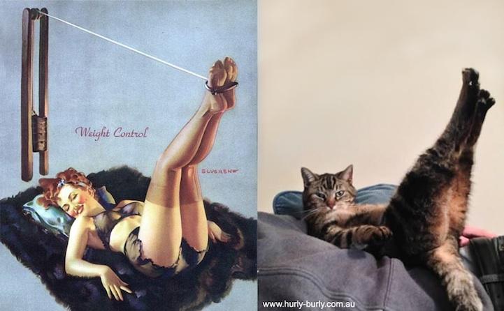 Catsthatlooklikepinupgirls05